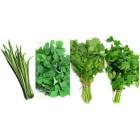 سبزی آش تازه درجه1 1کیلوگرم